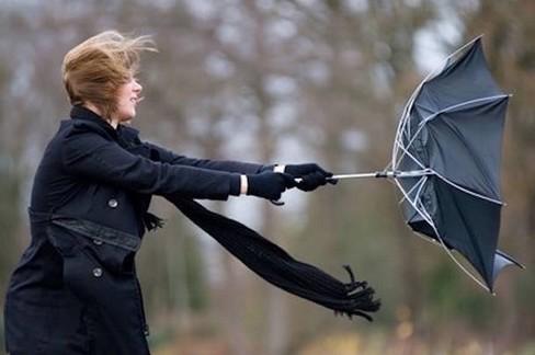 Una giornata di vento