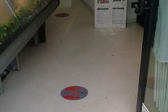 Adesivi distanziatori nei negozi a Modugno, l'iniziativa di Confcommercio