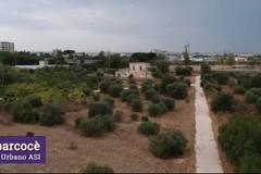 Il parco urbano in zona Asi