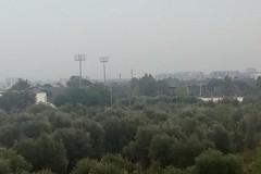 Fondi (75mila euro) per la copertura del campo sportivo