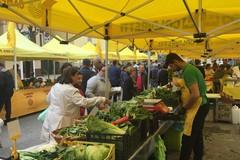 Domenica in piazza Sedile si rivedono le bancarelle del mercato contadino