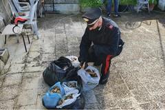 Sorpreso in sella alla bici con botti illegali, arrestato 48enne a Modugno
