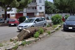 Porto Torres, l'acquisizione dell'area in consiglio comunale a Modugno