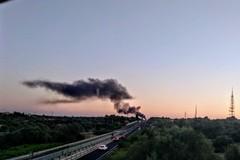 Vasto incendio nelle campagne di Modugno, i Rangers: «Situazione insostenibile»