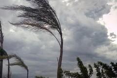Forte vento sulla Puglia e Modugno, è allerta gialla