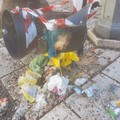 Atto vandalico in Piazza Romita Vescovo