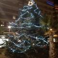 Luci, colori e allegria: ecco le vie del Natale