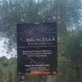 Quattro anni dalla tragedia della Bruscella Fireworks, Modugno non dimentica