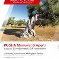 Un viaggio nella storia con Monumenti Aperti: anche a Modugno il 23 e 24 Novembre