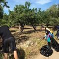 Rifiuti abbandonati nelle campagne, a Modugno in scena la Plastic Free Walk