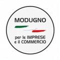 Elezioni amministrative, i candidati di Modugno per le Imprese e il Commercio