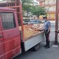 Da Bitonto a Modugno con 500 kg di merce ma senza autorizzazione, multato