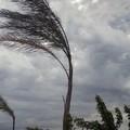 Forte vento sulla Puglia, per domani è allerta arancione