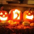"""Halloween a Modugno, l'appello del sindaco:  """"Non è il momento di festeggiare """""""